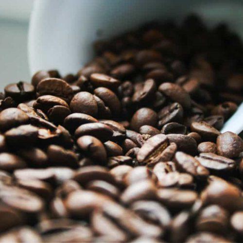 Home : café